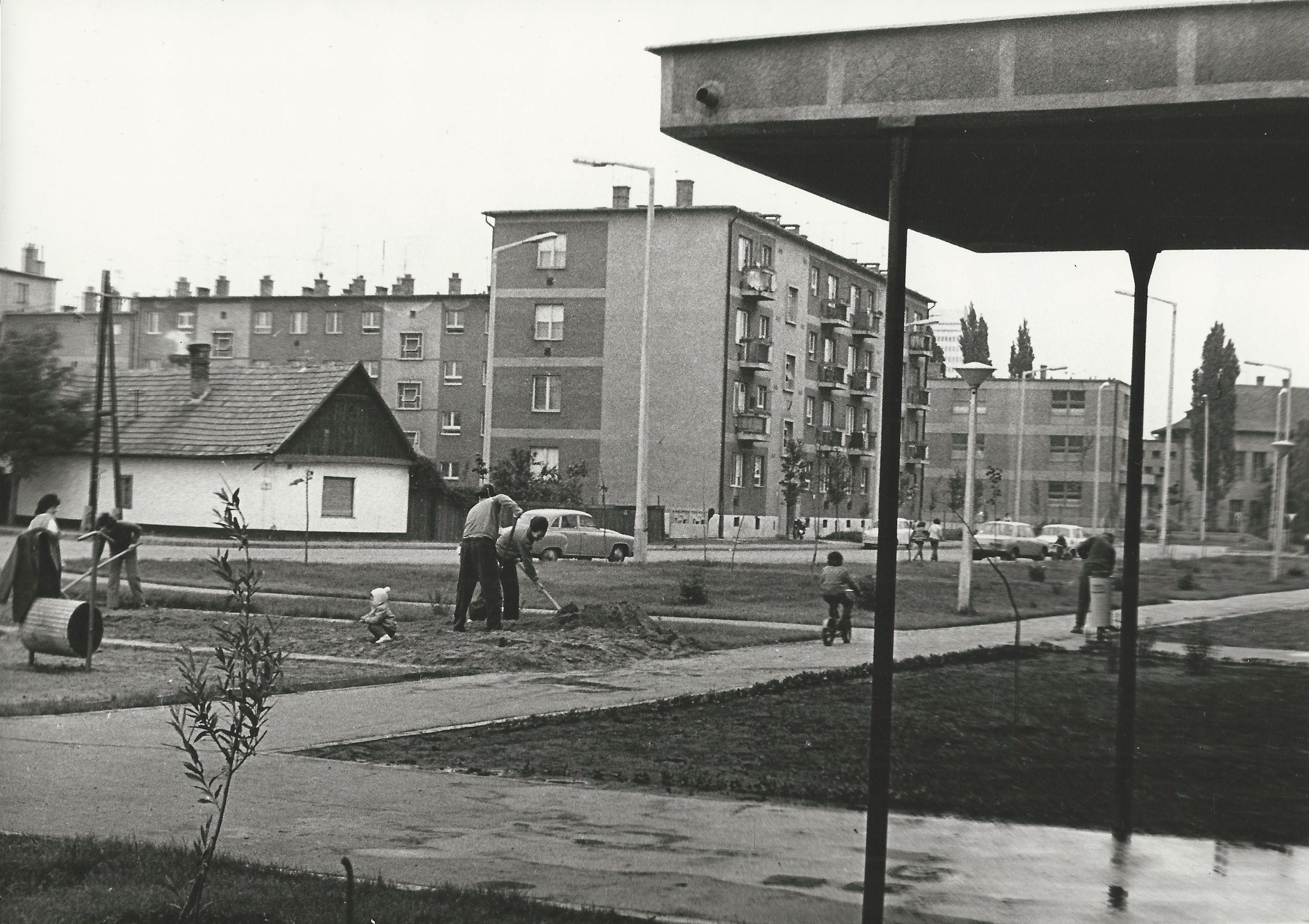 Csekő László 1975