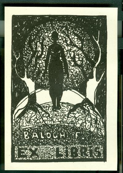 Balogh Ferenc sötét erdő, nő