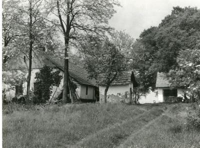 Tóbiás Lajos-tanyája-Mártély-tanya 294