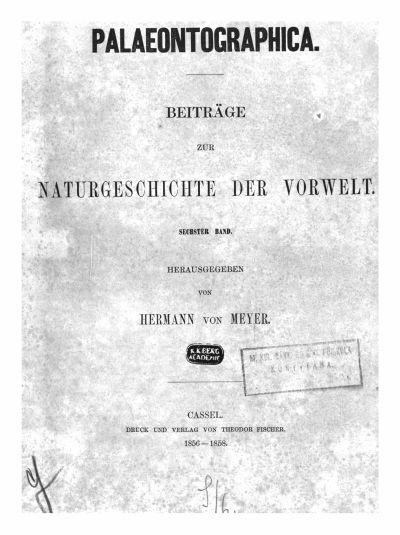 Meyer, Hermann 6. Bd. 1856-1858