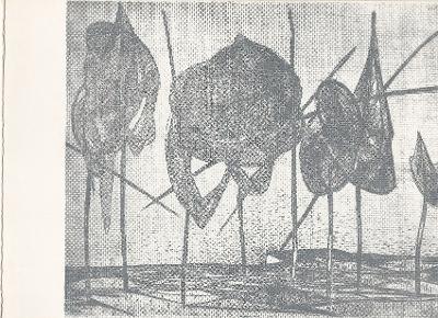 Bokros László festőművész kiállítása