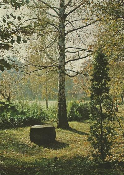 Tiszakürt